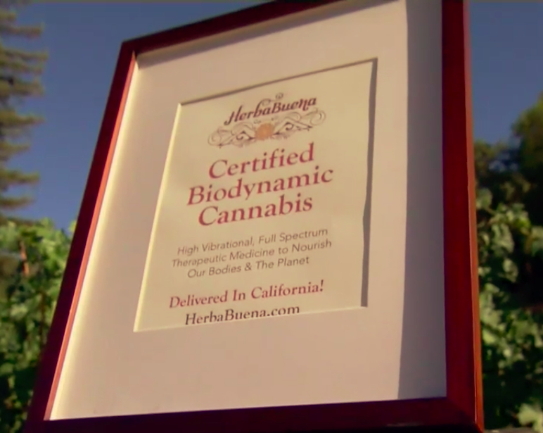 California finds pot of gold in wine and weed
