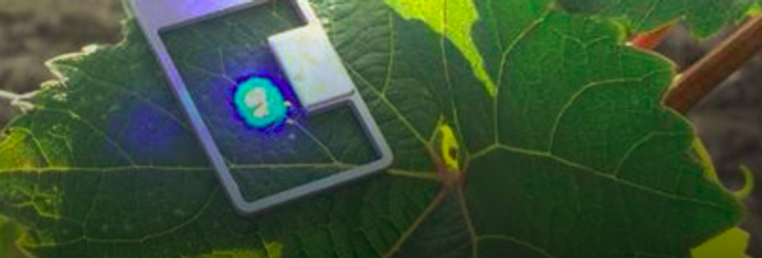 Agricultural Goes High Tech