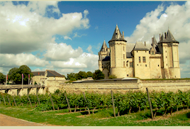 wine article Loire