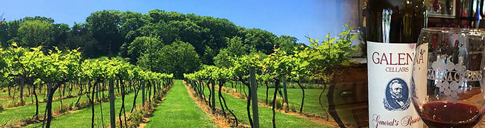Galena Cellars Winery Tour
