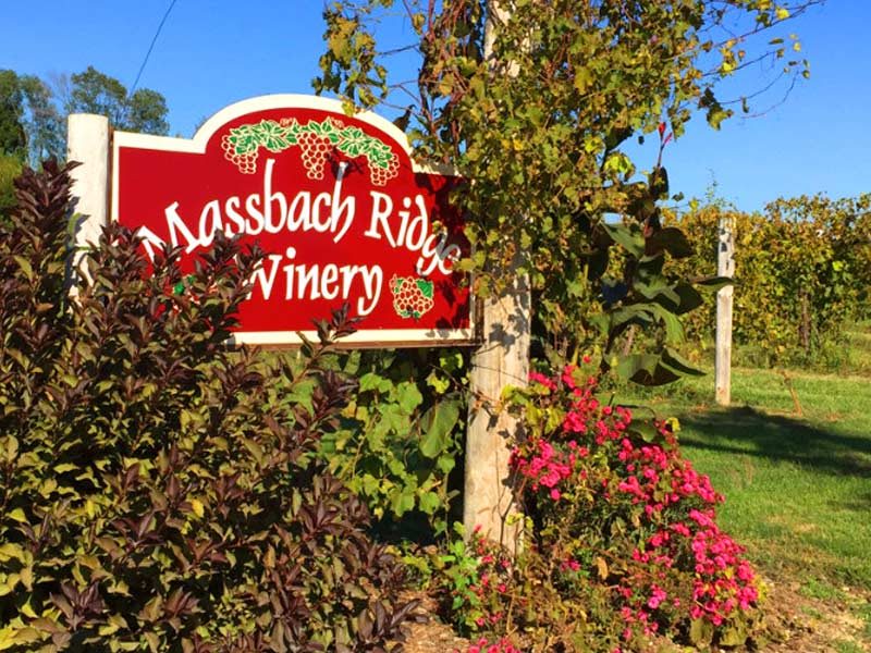 Massbach Winery